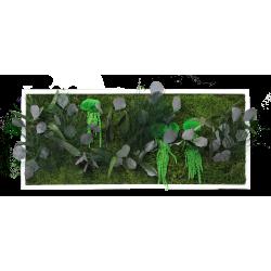 Cadre végétal petit panoramique - 80x35 cm