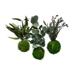 Lot de 3 boules végétales de décoration